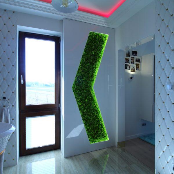 Łazienka-sypialnia-1 (Kopiowanie)